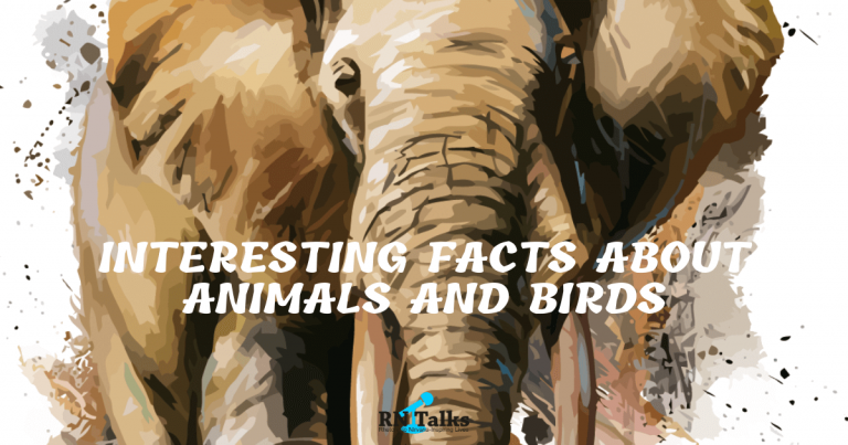 Interesting Facts About Animals And Birds Quiz