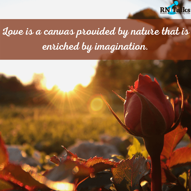 Best Rose Day Quotes And Messages For Your Valentine