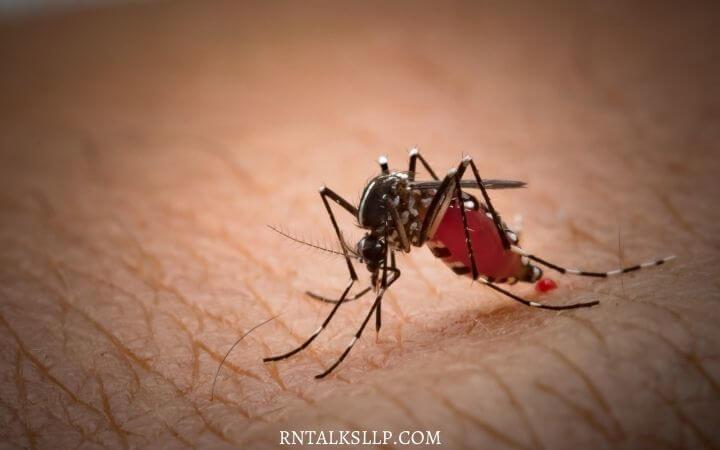 Malaria Quiz Test Your Malaria Prevention Knowledge