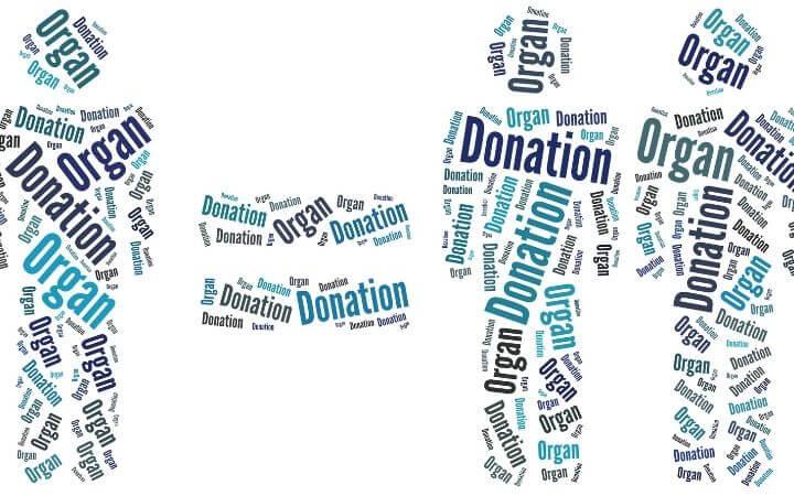 International Organ Donation Day Quiz